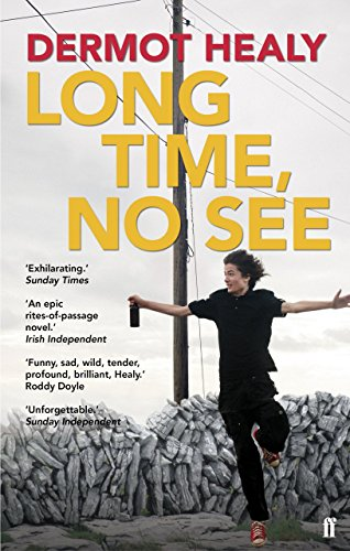 Long Time, No See by Dermot Healy (5-Apr-2012) Paperback