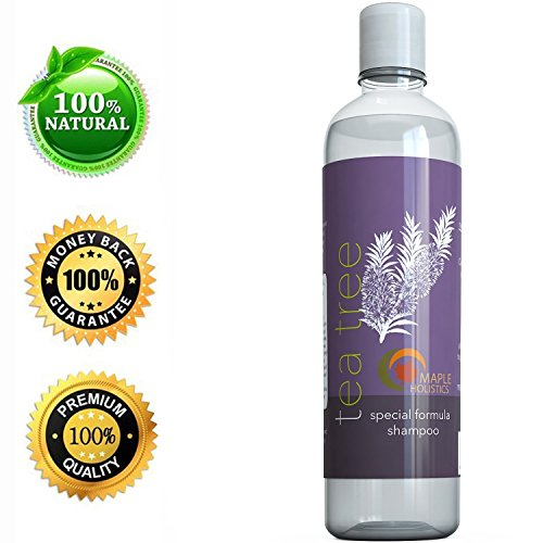 Tea Tree Oil Shampoo Holistics product image