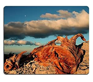 Wood Mountain Cloud Nature Scenery Mouse Pads Customized Made to Order Support Ready 9 7/8 Inch (250mm) X 7 7/8 Inch (200mm) X 1/16 Inch (2mm) High Quality Eco Friendly Cloth with Neoprene Rubber Luxlady Mouse Pad Desktop Mousepad Laptop Mousepads Comfortable Computer Mouse Mat Cute Gaming Mouse pad by icecream design