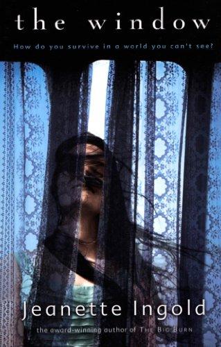 The Window (English Edition)