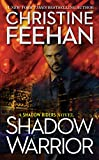 Shadow Warrior (A Shadow Riders Novel)