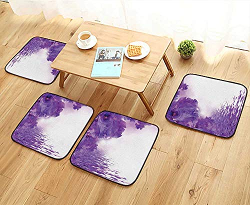 Chair Cushions Decor Iris Flowers Petals Against The Water River Mystical Magical Fairy Nature Image Health is Convenient W19.5 x L19.5/4PCS Set ()
