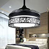 Huston Fan 36 inch Bird's Nest Fan Light Stealth Ceiling Fan Home Simple Modern LED with Lights for Study Corridor Children's Room-Black (36 inch, Black)