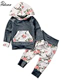 Baby Girls Long Sleeve Flowers Hoodie Top and Pants Outfit with Kangroo Pocket (70(3-6M), Grey)