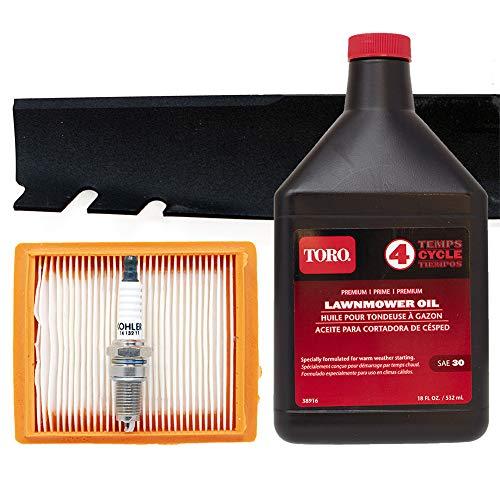 Toro Recycler with Kohler Engine Tune-up Kit (Serial Number 314200001 thru 315000000)
