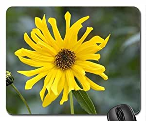 The African Yellow Daisy Mouse Pad, Mousepad (Flowers Mouse Pad)