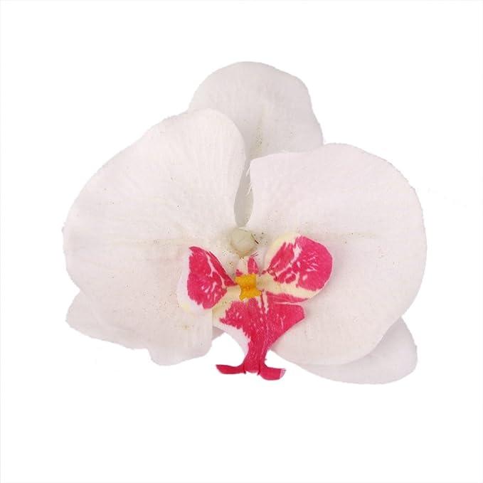 20x Flor Orquídea Artificial de Pelo Muñeca Decoración de Boda (blanco): Amazon.es: Deportes y aire libre