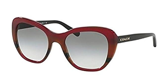 e3701be0a5 Coach HC8204 L1631 Sunglasses 544413 Auburn Navy Tort Varsity Stripe  52-19-140  Amazon.co.uk  Clothing