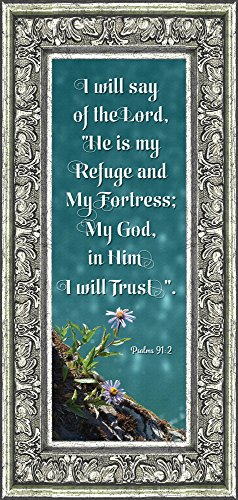 In Him I Trust, Gifts with Scripture, Christian Picture Frame, 6x12 7325 (6x12, Silver Ornate) by Frames of Mind