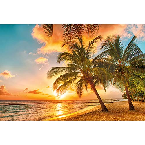 Great Art Wall Decorations Barbados Wallpaper - Beach Paradise Mural Sunset Sandy Beach Poster Tropical Design (55 Inch x 39.4 Inch/140 cm x 100 cm)