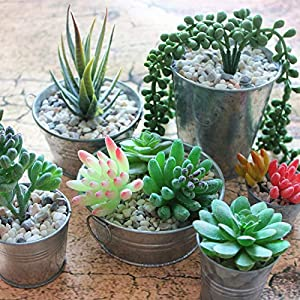 TEHome Assorted Artificial Succulents Picks 58