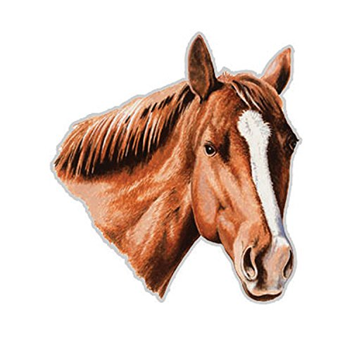 Rivers Edge Products Horse Auto Magnet