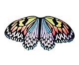 Kids Fairy Butterfly Wings Costume for Girls Boys Monarch Dress Up Princess Pretend Play Princess Party Supplies (Rainbow)