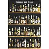 Beers of the World Beer Bottles on Shelves Art Poster Print - 24x36