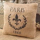 Paris 1868 & Fleur De Lis French Flea Market Small Burlap Accent Throw Pillow - 7-in x 7-in