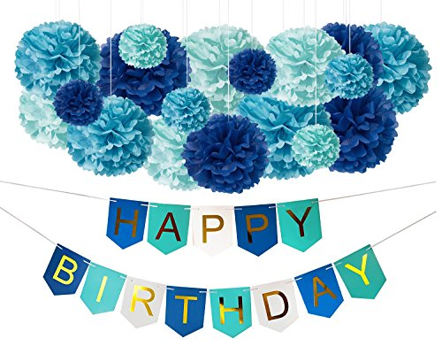DIY Blue Birthday Decorations - Happy Bday Party Banner Sign and DIY Tissue Paper Pom-Poms Decor Kit for Boys Men Girls Kids - Turquoise Blue Gold - Princess Shark Theme -