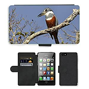 Super Stella Cell Phone Card Slot PU Leather Wallet Case // M00149128 Kingfisher Brazil South America Bird // Apple iPhone 4 4S 4G