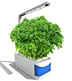 Smart Herb Garden Hydroponics Pathonor Indoor Plant Growth LED Light Kit Mini Garden Self-Watering Pots, Seeds Planting & Intelligent Desk Reading Lamp