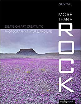 Book More Than a Rock: Essays on Art, Landscape, and Photography