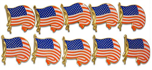 Patriotic Waving American Flag 10-Piece Lapel or Hat Pin and Tie Tack Set with Clutch Back by Novel