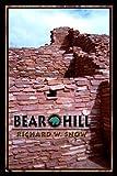 Bear Hill, Richard W. Snow, 0805990437