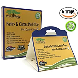 Pantry and Clothes Moth Trap With Natural Pheromone Attractant Safe Non-Toxic with No Insecticides (6, Yellow)
