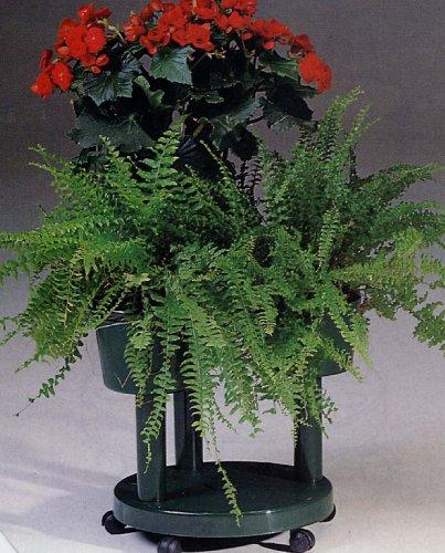 italian plant stand - 4
