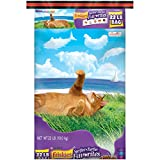 Purina Friskies Dry Cat Food, Surfin' & Turfin' Favorites - 22 lb. Bag
