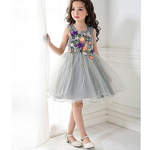 Gray Girls Dresses Girls Princess Wedding Special Occasion Dress