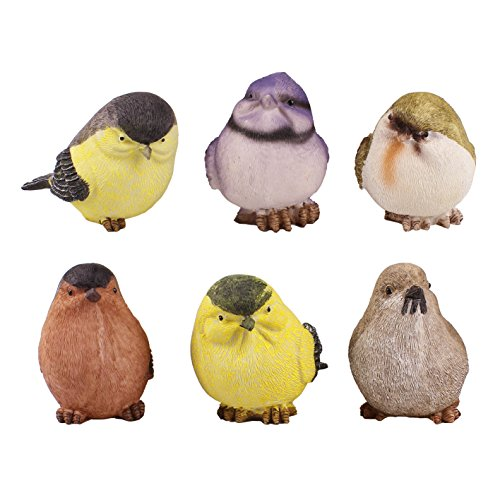 Danmu 6pcs a Set Polyresin Mini Bird Figurine Animals Decoration Figurine Collection Country Garden Sculpture Set Indoor Outdoor ()