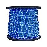 9 Feet of LED Rope Light in Blue