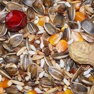 Higgins Supreme Seed Mix for Parred