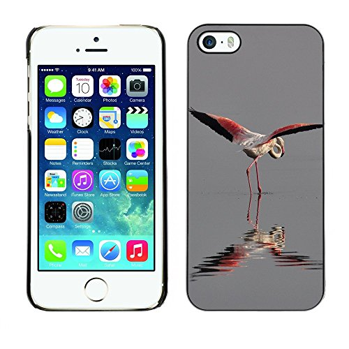 Premio Sottile Slim Cassa Custodia Case Cover Shell // F00000015 camarguefrance nature // Apple iPhone 5 5S 5G