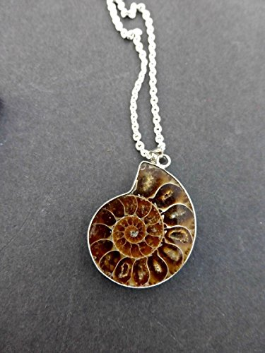 Ammonite brown stone in silver frame fossil and metal pendant with chain necklace. Handmade jewelry, jewellery. Fashion, Accessories. Boho, Bohemian. (Necklace Stone Fossil)