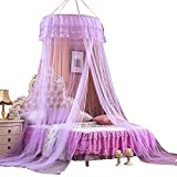 Princess Mosquito Net Netting Bedroom Ceiling Dome Hanging Round Lace Bed Canopy for Crib Twin Full Queen Bed (Purple)