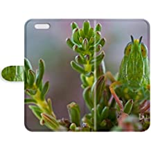 Y.H.X Hot Premium Leather Case With Scratch-resistant/ A grasshopper on Jonaskop, a mountain in South Africa Leather Case Cover For iPhone 7/iPhone 8