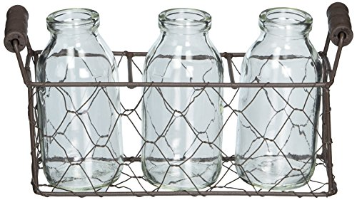 Blossom Bucket 131-36733 Small Rectangle Decorative Metal Basket with Three Glass Bottles