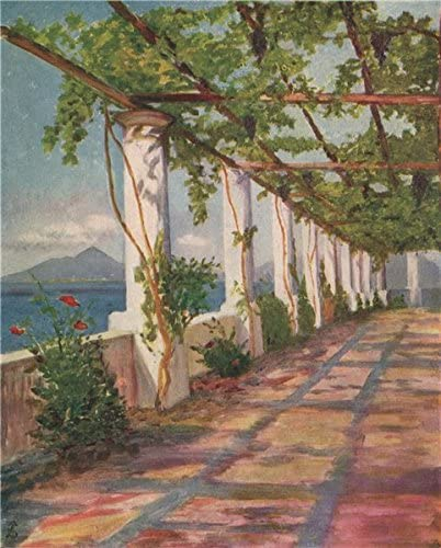 Napoli. pérgola por David Fitzgerald. Nápoles, antiguo de 1904 ...
