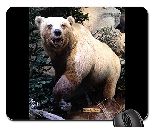 - Mouse Pads - Grizzly Bear Scarecrow Museum Mount Taxidermy Bear