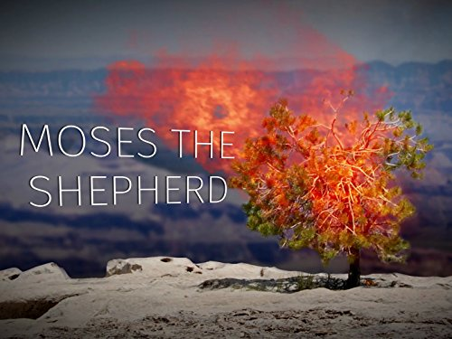 Part 2: Moses the Shepherd (Story Of The Ark Of The Covenant)