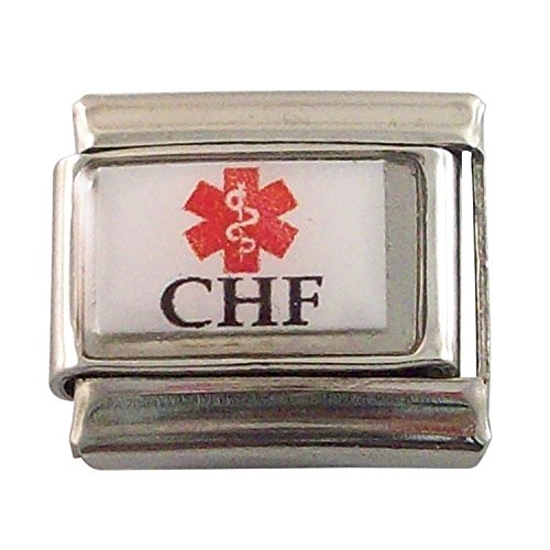 - 2 Pack CHF Medical Alert Italian Charms for Bracelet Jewelry Link