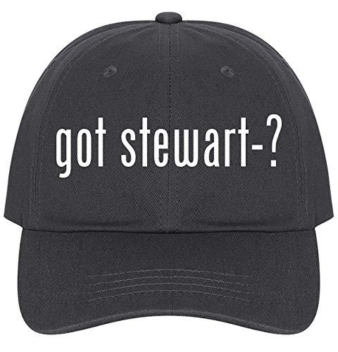 (The Town Butler got Stewart-? - A Nice Comfortable Adjustable Dad Hat Cap, Dark Grey)