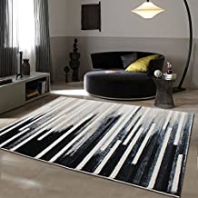 the carpet for the living room / coffee table sofa-carpet/ simple and modern blanket-N 80x150cm(31x59inch)