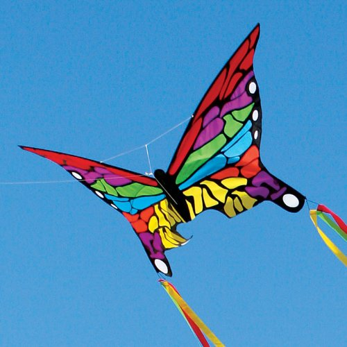 Skydog Rainbow Butterfly Kite