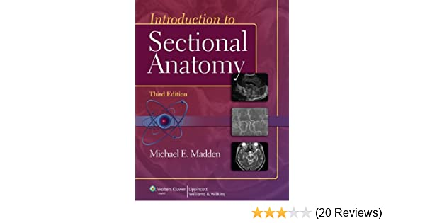 Introduction To Sectional Anatomy Point Lippincott Williams