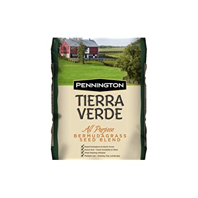 Tierra Verde Bermuda Grass Seed Blend : Garden & Outdoor
