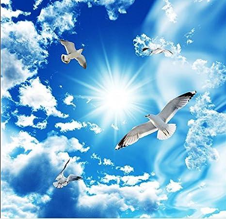 Sykdybz Cielo Blu E Nuvole Bianche 3d Camera Paesaggio Sfondi 3d