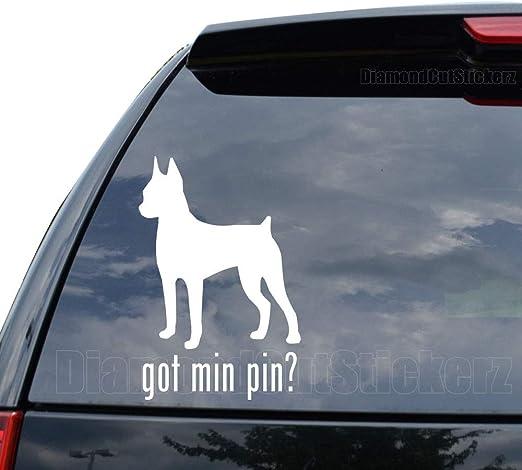 Got Miniature Pinscher Sticker Vinyl Auto Window Min Pin