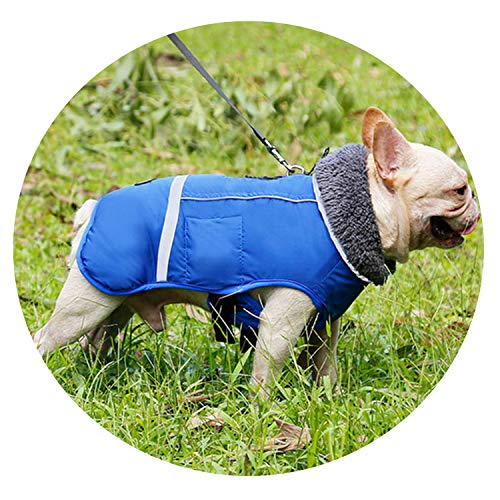 love enjoy Dog Clothes Winter Clothing Outdoor Waterproof Dog Jacket Thicken Warm Adjustable pet Clothes,Blue,S
