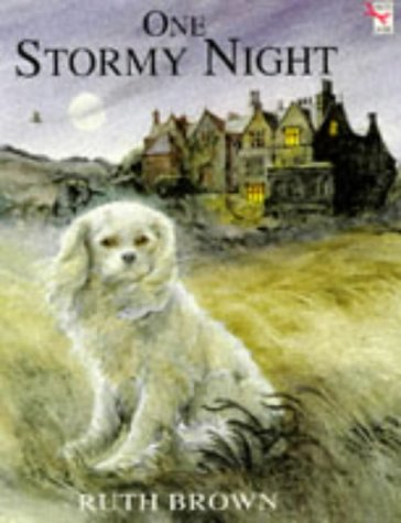 One Stormy Night (Red Fox picture books)